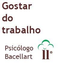 Gostar do trabalho - Bacellart Psicólogo USP Coach