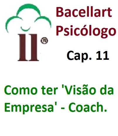 Como ter Visão da Empresa Estratégia e Missão Valor Bacellart Psicólogo 11