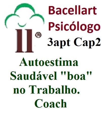 """3-2 Autoestima Saudável """"boa"""" no Trabalho - Bacellart Psicólogo Coach"""