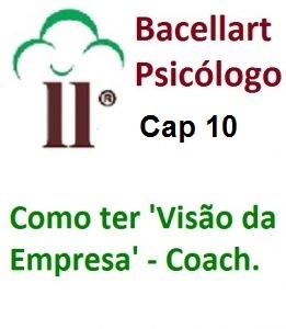 Como ter Visão da Empresa Estratégia e Missão Valor Bacellart Psicólogo 10